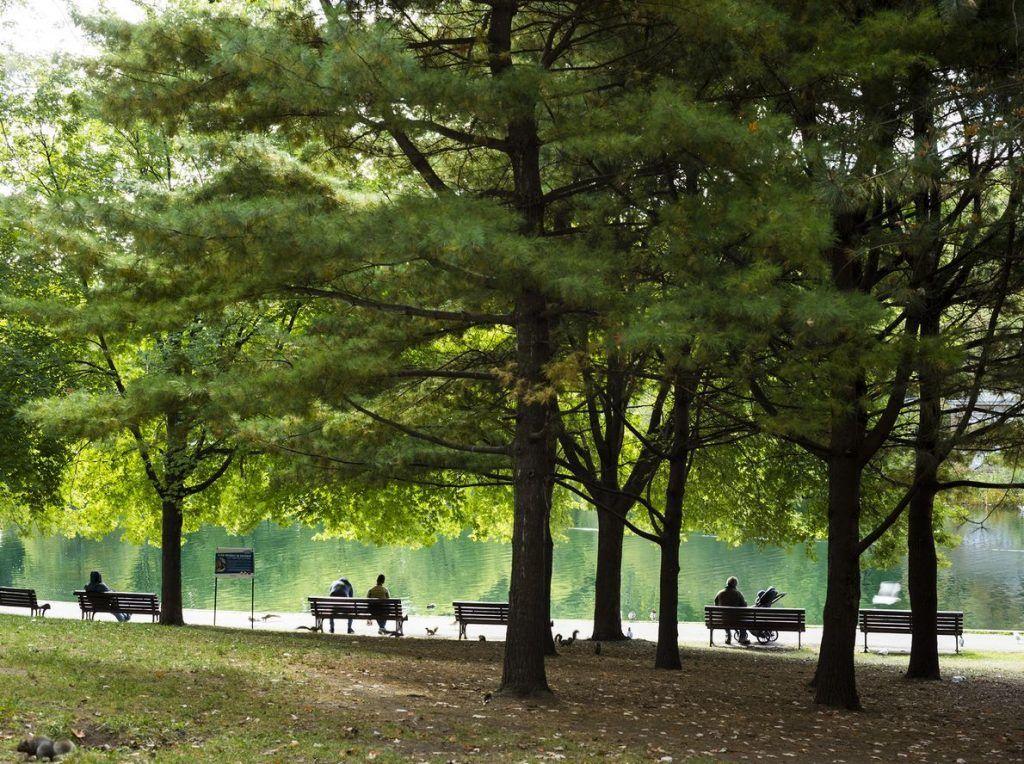 Montreal parc la fontaine
